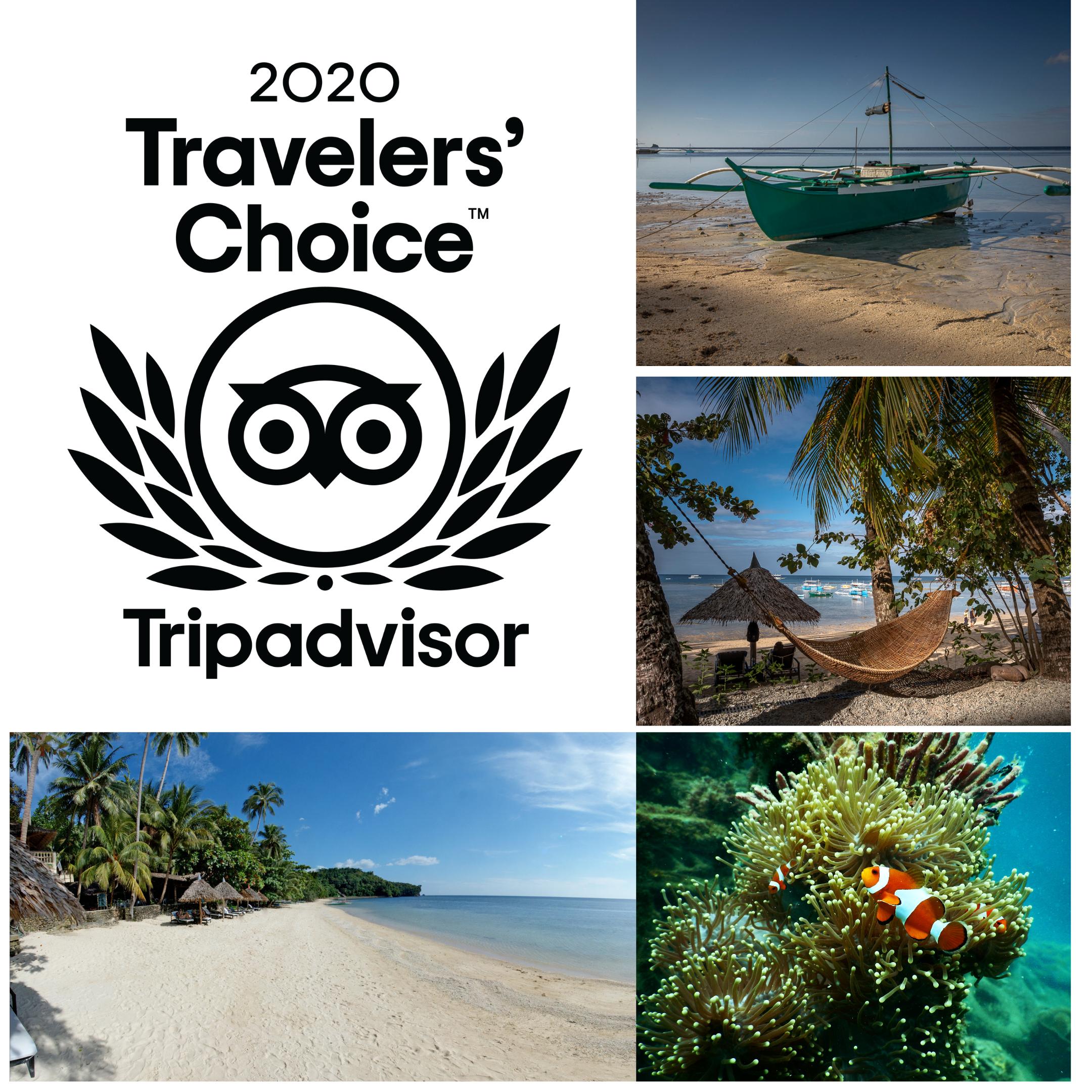 Traveler Choice 2020
